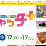 9月27日(月)今日放送の「NEWS情報キャッチ+」で夙川グリーンプレイスが生中継で紹介されるみたい