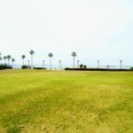 来年、春に鳴尾浜臨海公園でめっちゃ楽しそうなイベントが開催されるみたい。実行委員も募集