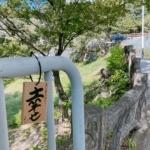 夙川の上流部に「笑顔になる小道」を見つけた