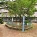 里中町の住宅街にある一本松公園【西宮フォト】